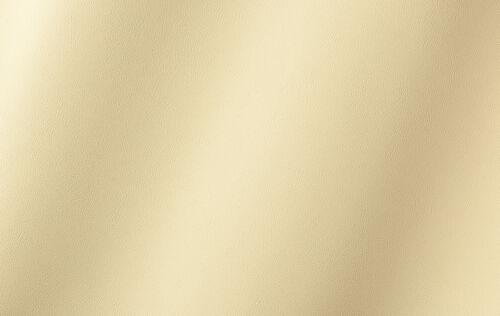 Automobil Outdoor Boot Polster Möbel Kunstleder Sitzbezug Meterware vanille
