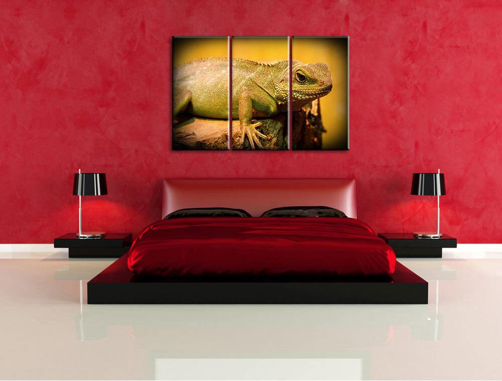 Pequeñas Verde Lagarto 3-Teiler Foto en en en Lienzo Decoración de Pared Impresión 3a0e85