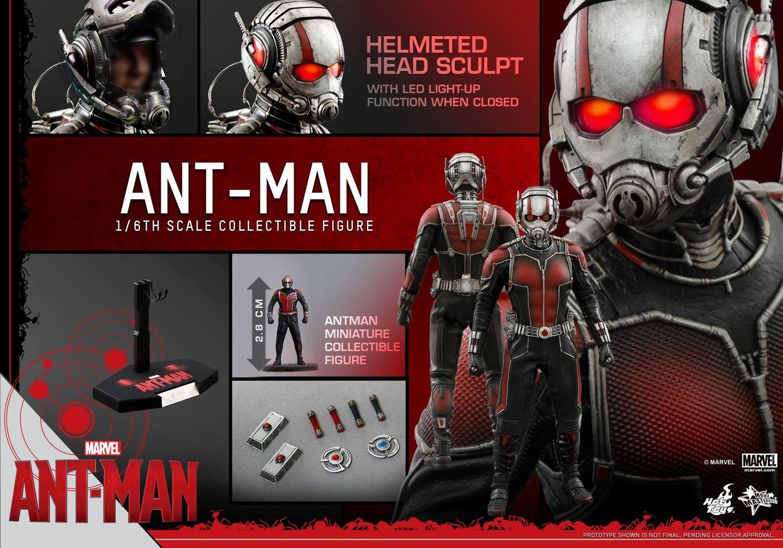 El aclaramiento  Hot Toys 1 6 Marvel Ant-Man MMS308 Scott Lang 12  Figura De Acción