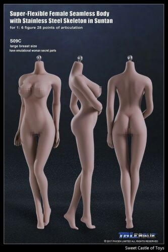 1//6 tbleague abbronzante corpo senza giunture Donna Busto Grande S09C con scheletro in acciaio Phicen
