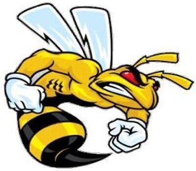 NOSTALGIC DODGE SUPER BEE FIGHTER HARD HAT STICKER TOOLBOX STICKER LUNCH BOX