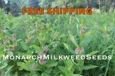 30x//Bag Butterfly plant Silk plant Orange-Samen-tuberosa-Seeds Y9L J5D3 Asc B1H5