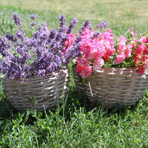 Merveilleux DECO dekotopf Pâturage pot de fleurs Plantes 2er Set Bois cache-pot