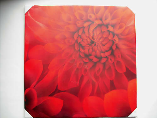 LARGE WOODEN FRAMED MOUNTED CANVAS PRINT WALL ART  RED DELIA FLOWER FLORAL 60cm