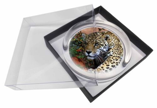 Jaguar Glass Paperweight in Gift Box Christmas Present AT-4PW