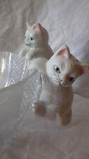 Salz und Pfefferstreuer Streuerset Katzen hängend für Salatschüssel 2 Sets