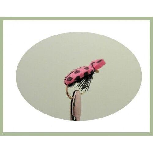 COLEOTTERI Trote Volare 6 Pack Pink Lady coleotteri per pesca a mosca Taglia 10