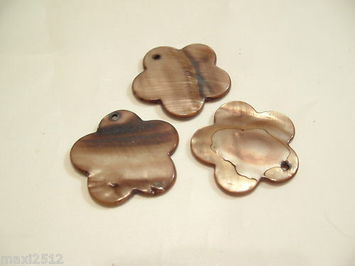 BNSB87 Brown 5 x 30mm Dyed Shell Flower Beads