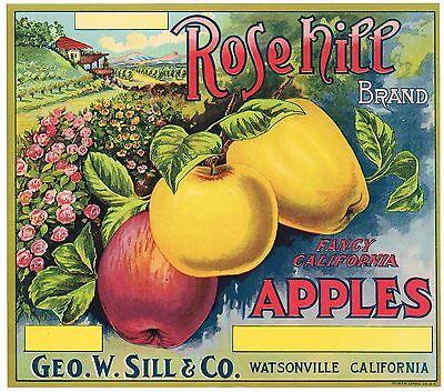 ROSEHILL CALIFORNIA APPLE CRATE LABEL STONE LITHO ORIGINAL C1920 WATSONVILLE