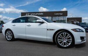 2020 Jaguar XF 25t Prestige | LOW KMS!! | AWD | Roof | Rear Parking Aid