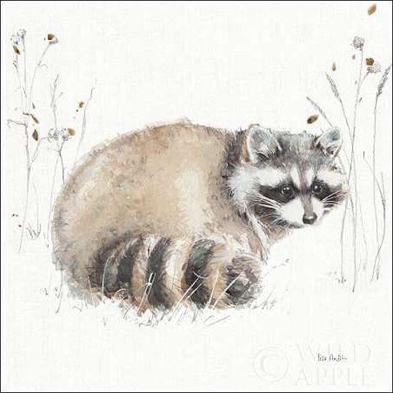 Lisa Audit  A Woodland Walk X Keilrahmen-Bild Leinwand Waschbär Wildtiere Natur