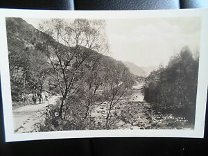 The-Borrowdale-Birches-Horse-Cart-in-View-Vintage-RP-Postcard-UNUSED