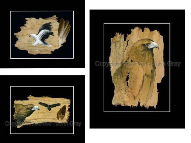 "1x3 Print Set, BARK ART ""Signed"" -EAGLES by John Gray - Unique Barkart"