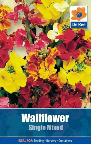De Ree Seeds Collections Flower Seeds Wallflower Single Mixed