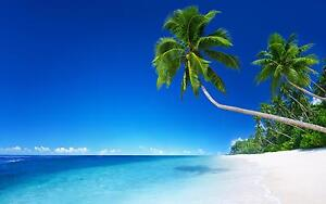 Tropical beach images 47