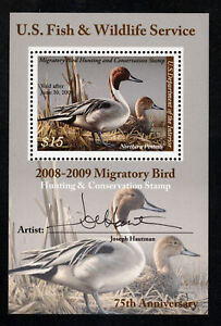 SCOTT RW75b 2008 $15 DUCK STAMP ISSUE SOUVENIR SHEET MNH OG F-VF CAT $50!