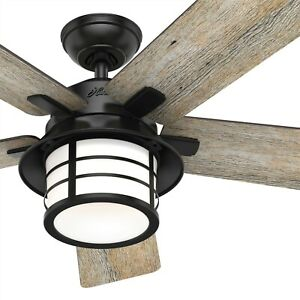 Hunter Fan 54 Inch Casual Matte Black Ceiling Fan With Light And Remote 5 Blades 840304138234 Ebay