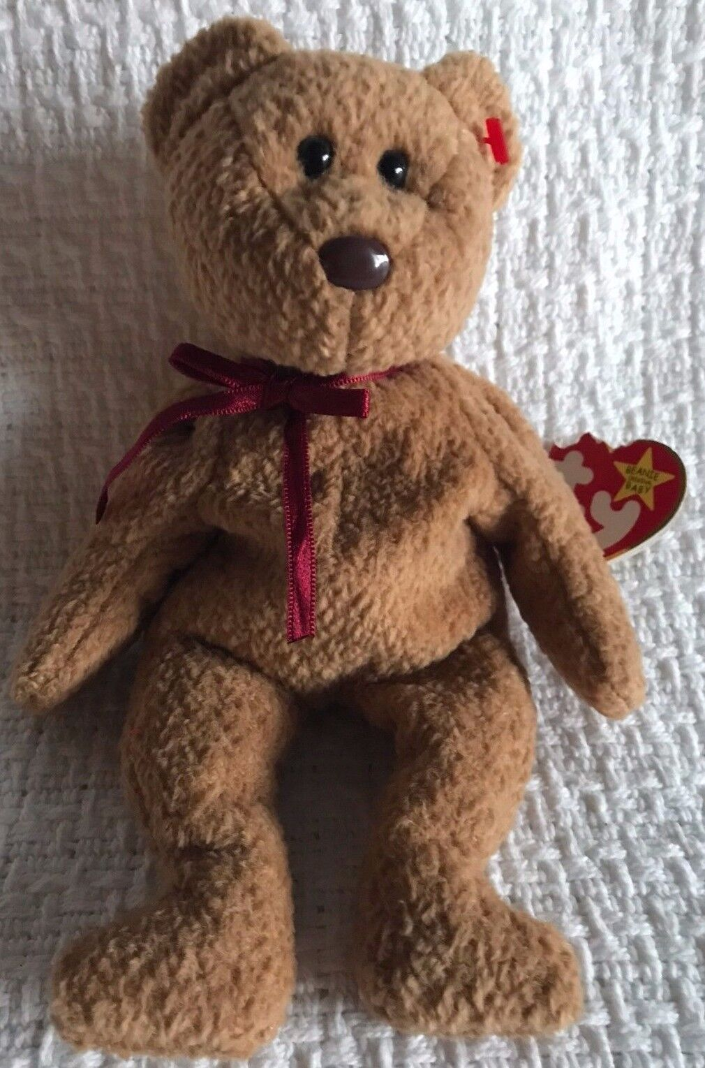 RARE RETIRED TY Beanie Babies  CURLY  Bear - WITH LOTS OF ERRORS