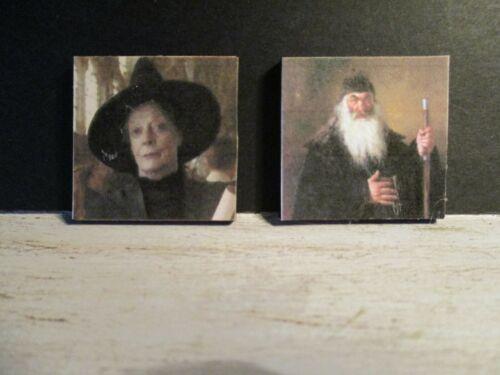2 casa de muñecas en miniatura de pinturas de Harry Potter m6