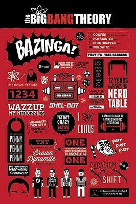 New The Big Bang Theory Infographic Phrase Quotes And Jokes Poster