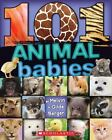101 Animal Babies by Melvin Berger (2013, Paperback)