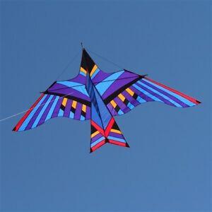 Delta Kite Cloud Bird George Peters Huge 116 Ripstop Nylon Carbon Spars Case Ebay