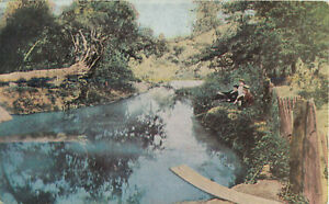 Postcard-The-Original-Old-Swimming-Hole-James-Whitcomb-Riley-Greenfield-IN