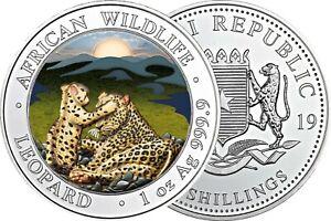 Somalia-100-Shilling-2019-Leopard-1-Oz-Silber-Anlagemuenze-in-Farbe