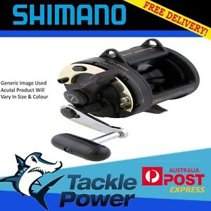 Shimano-TLD20-Overhead-Fishing-Reel-Brand-New-10Yr-Warranty