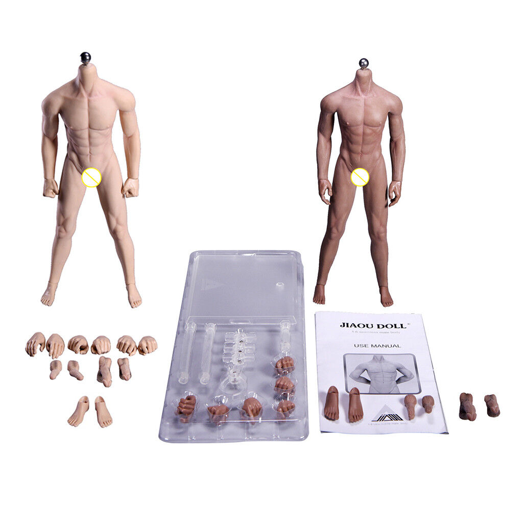 1 6 Scale Male Model Nude Body Body Parts Hands Feet Accs Muscular Skeletons