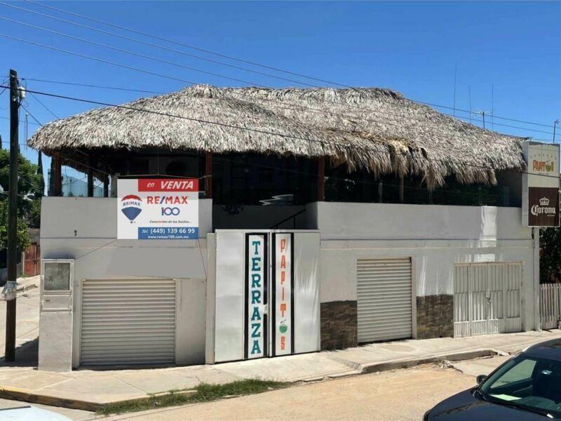 Local Comercial en Venta en Rincón de Romos