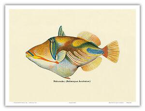 Image Is Loading Hawaiian Fish Humuhumunukunukuapua 039 A Aloha Oahu Vintage