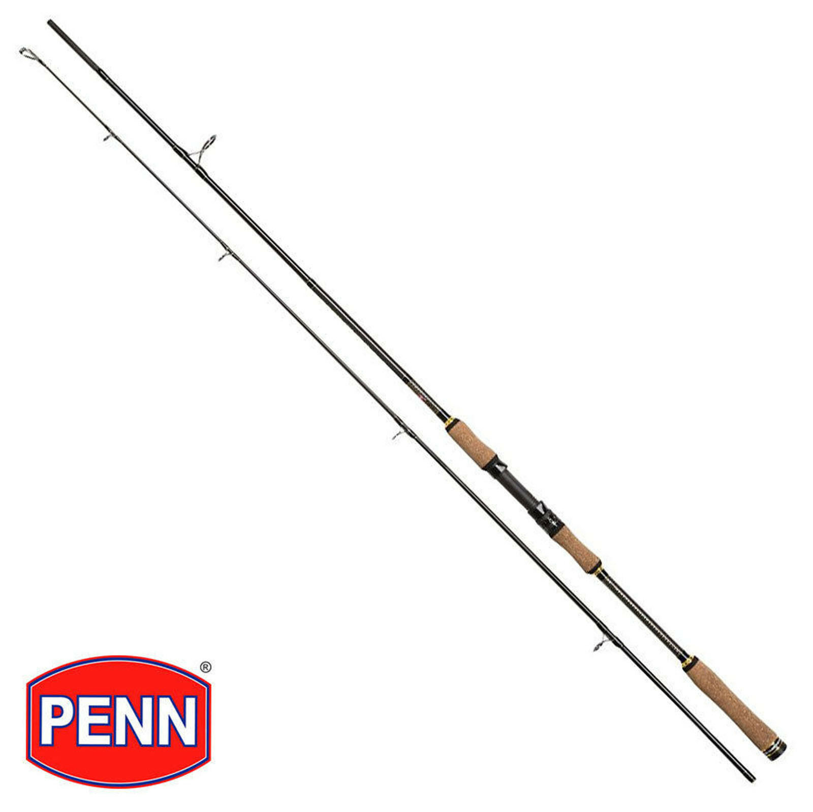 Penn Regiment II SW Spin Spinning Casting Sea Fishing Rod Saltwater Fishing