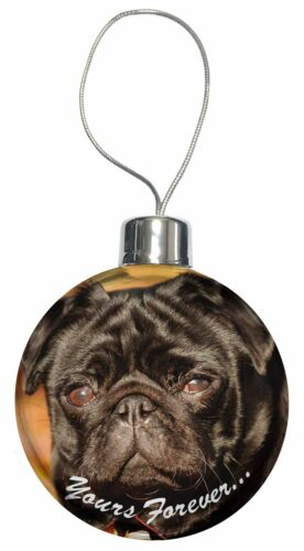 AD-P97yCB Black Pug Dog /'Yours Forever/' Christmas Tree Bauble Decoration Gift