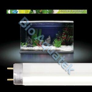 Tube neon t5 aquarium