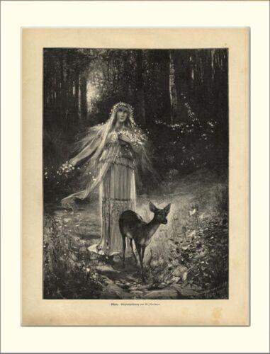 Ostara Germanic Spring Goddess Deer Mythology Forest Wood Engraving L 1366