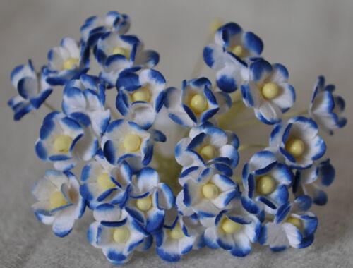 50 2 T Azul Real Doble Capa Daisy Flor de papel de morera Miniatura Cardmaking