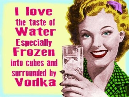 J/'aime le goût de l/'eau gelée en particulier avec la vodka Plaque métal étain signe 599