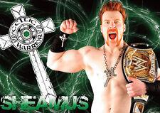 Sheamus Wrestling Superstar POSTER