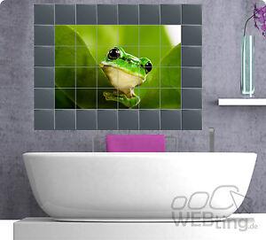Das Bild Wird Geladen Fliesenaufkleber Fliesenbild Fliesen Aufkleber  Sticker Badezimmer Frosch Frog