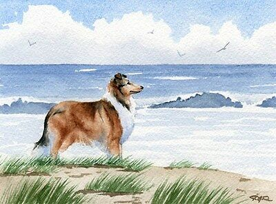 ROUGH COLLIE Art Print 8 x 10  Beach DOG Signed by Watercolor Artist DJR w/COA