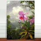 "Martin Johnstone Head Hummingbird Perched Orchid ~ FINE ART CANVAS PRINT 24x18"""