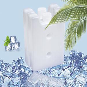 Reusable Ice Blocks Stay Fresh Picnic Fruit Cooler Box 2PCS Food Storage Camping
