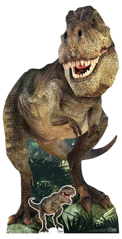 Tyrannosaurus Rex Dinosaur Naturhistorisches Museum Pappfigur - T Rex   Niedrige Kosten    Verschiedene Arten und Stile