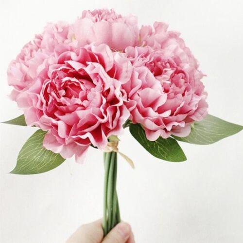 DIYHouse® 1Bouquet 5 Colors Artificial Flowers European Silk Peony Flower