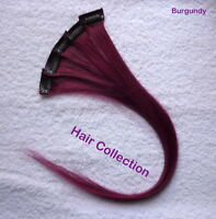 Burgundy- 18long Human Hair Clip On In Extensions For Highlight(5pcs)