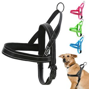 Reflective Nylon Dog Harness No Pull Quick Fit for Small ...