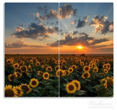 Sonnenblumenwiese Wolken Herdabdeckplatte 2-teilig aus Glas 60x52cm