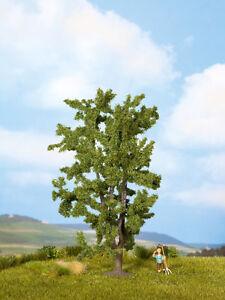 NOCH 25850 (more sturdy) Acacia ca 5 7/8in high NIP