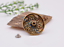 10X-Western-3D-Flower-Turquoise-Conchos-For-Leather-Craft-Bag-Belt-Purse-Decor miniature 59